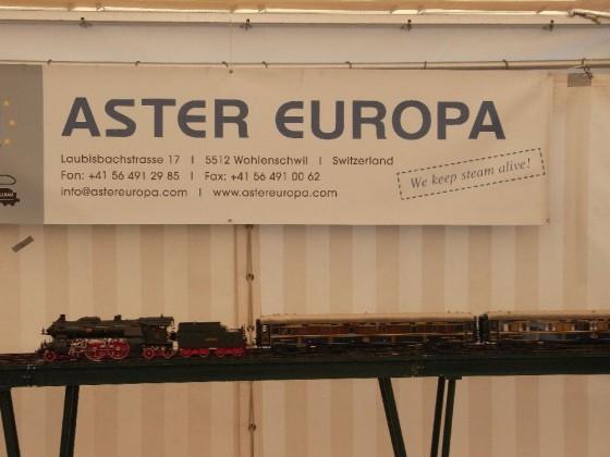 Aster Europa Echtdampf