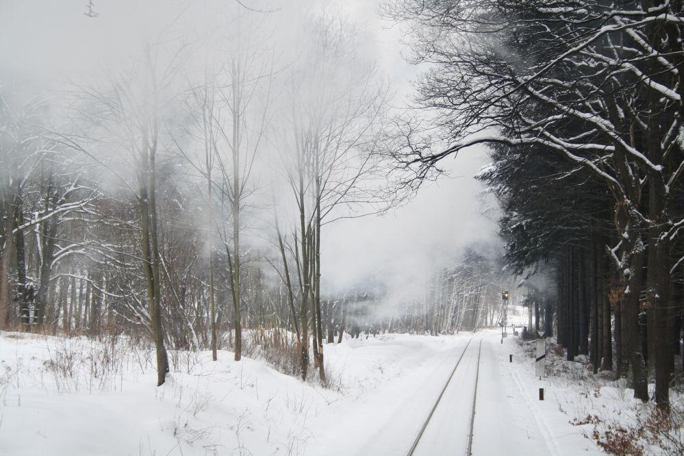 Harzer Schmalspurbahn Brocken Livesteam